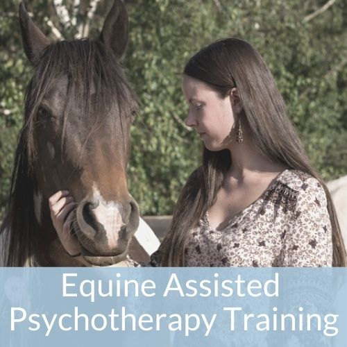 Equine Assisted Psychotherapy Training