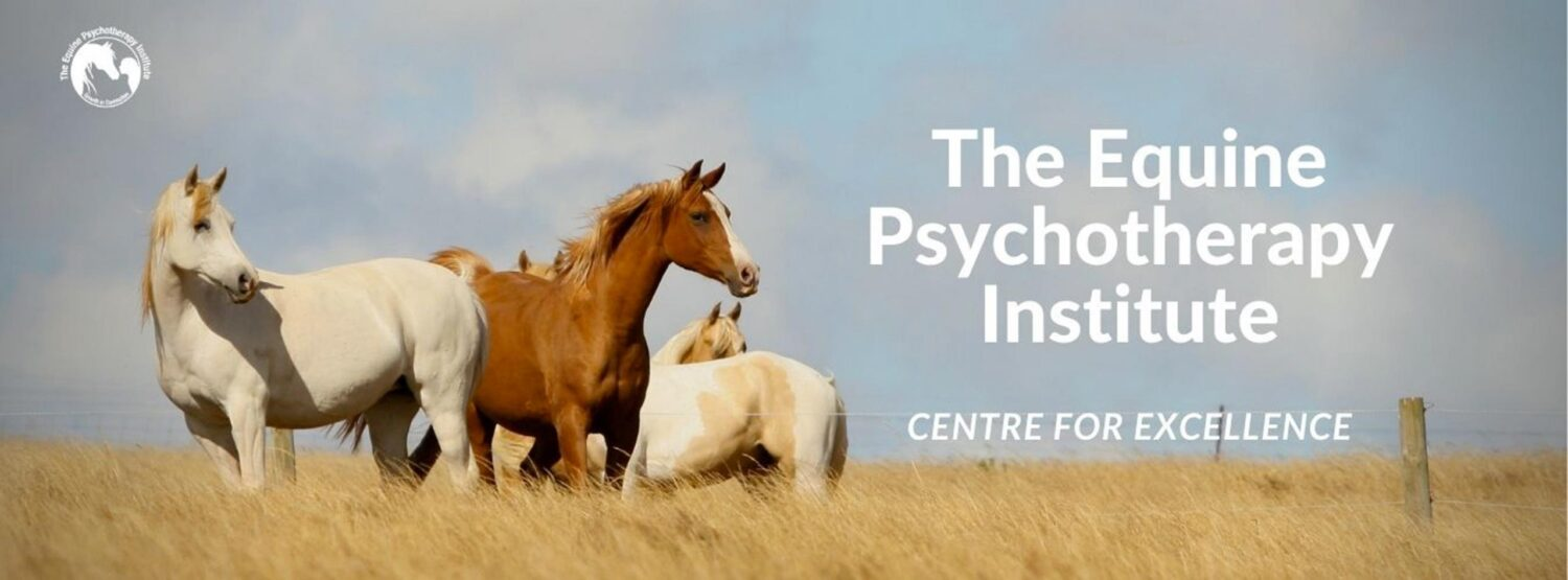 Equine Therapy Training - Equine Psychotherapy Institute