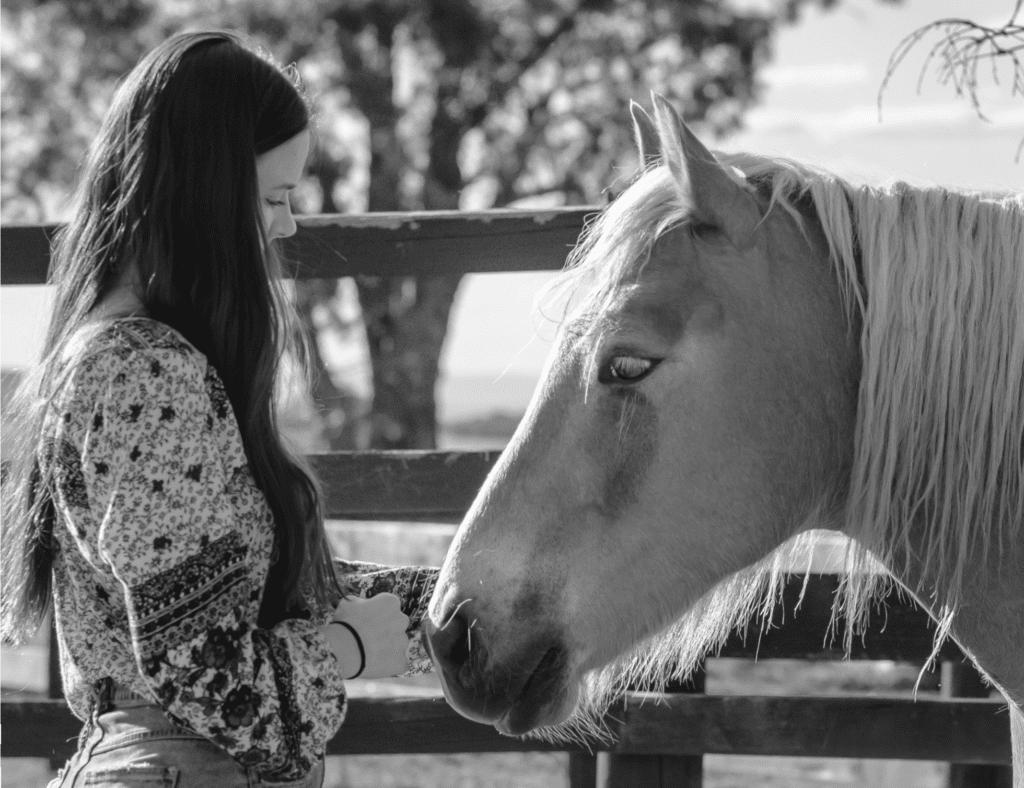 Horses help improve mental health